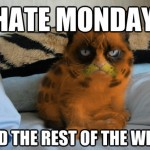 Grumpy Cat Hates All the Days