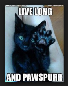 Live Long and Pawspurr!