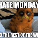 Grumpy Cat Hates All the Days